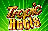 Тропические Барабаны с выплатой денег